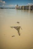Inundações de Budapest Foto de Stock Royalty Free