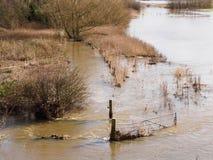 Inundações do inverno perto de Melbourne Derbyshire Imagem de Stock Royalty Free