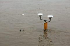 Inundações em Praga, República Checa, em junho de 2013 Imagem de Stock