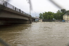 Inundações Praga 2013 Imagem de Stock