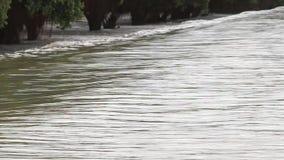 Inundación, corriente sobre el camino metrajes