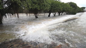 Inundación, corriente sobre el camino almacen de metraje de vídeo