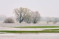 Inundación de Elbe del río imagenes de archivo