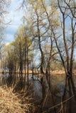Inundación de la primavera Fotos de archivo libres de regalías