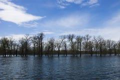 Inundación de la primavera imagen de archivo