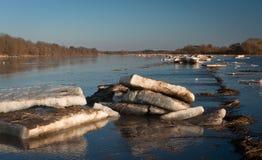 Inundación de la primavera en el río de Lielupe Fotos de archivo libres de regalías