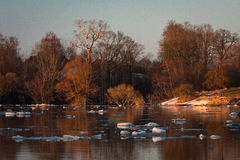 Inundación de la primavera en el río de Lielupe Fotografía de archivo libre de regalías