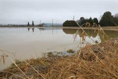 Inundación de las tierras de labrantío de la agricultura Fotografía de archivo libre de regalías