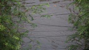 Inundación después de la lluvia de la estación de la monzón en Phnom Penh, Camboya metrajes