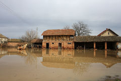 Inundación en la aldea Imágenes de archivo libres de regalías