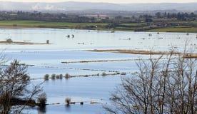 Inundación en Sedgemoor del oeste Somerset Imágenes de archivo libres de regalías