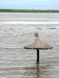 Inundaciones en el río de Paraná fotos de archivo