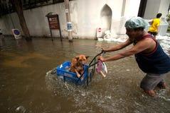 Inundaciones mega en Bangkok en Tailandia. Imagen de archivo libre de regalías
