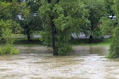 Inundaciones Praga junio de 2013 Fotos de archivo libres de regalías