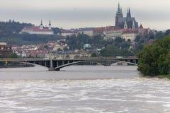 Inundaciones Praga junio de 2013 - castillo de Vysehrad Foto de archivo libre de regalías