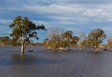 Inundaciones repentinas Fotos de archivo libres de regalías