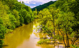 Inundando no Loch Raven Reservoir em Baltimore, Maryland fotografia de stock royalty free