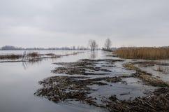 Inundação Imagem de Stock