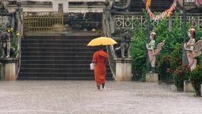inundation arkivfilmer