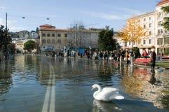 The inundation of lake Lugano Royalty Free Stock Image