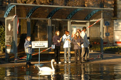 The inundation of lake Lugano Royalty Free Stock Photo