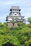 Inuyama Royalty Free Stock Image