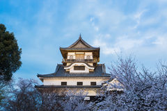 Inuyama castle historic building landmark in spring with beautif Stock Image