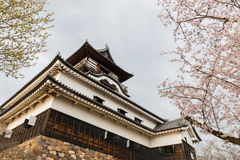 Inuyama castle historic building landmark in spring with cherry Royalty Free Stock Image