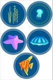 Invånarna av havet En uppsättning av illustrationer Arkivfoton