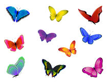 Invasion of butterflies Stock Images