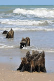 Invasione del mare Immagini Stock