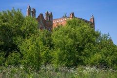 Invaso dalle rovine degli alberi del castello fotografia stock libera da diritti