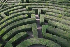 invecklad och komplex labyrint av häckar Royaltyfri Bild