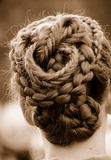 invecklat flätat hår royaltyfri fotografi