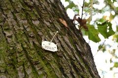 Inventario de árboles foto de archivo