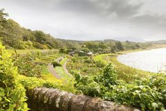 Inverewe Garden Scotland with a lot of endemic plant growing on. Inverewe – august 2014: in this garden that is located near the village of Poolewe in August Stock Images