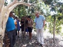 Inverkan av armod på fattiga neighbourhoods i Belize orsaka jordbruks- utveckling royaltyfri bild