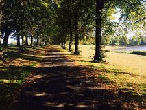 Inverleith Park, Edinburgh. Photo of Inverleith Park in Edinburgh of a pathway lined with trees Royalty Free Stock Photos