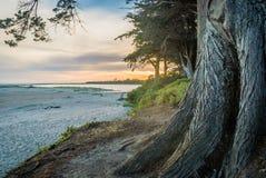 Inverloch surf beach at sunset in Victoria, Australia stock photography