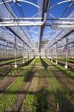 Invernadero 2 Fotografía de archivo