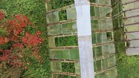 Invernadero con el vidrio dañado metrajes