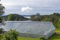Invernadero de cristal para la producción de tomates en Noruega Imagen de archivo libre de regalías
