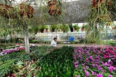 Invernadero de flores Fotografía de archivo libre de regalías