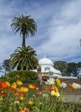 Invernadero de flores - San Francisco Fotos de archivo libres de regalías