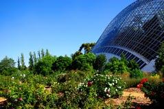 Invernadero de la selva tropical Fotografía de archivo libre de regalías