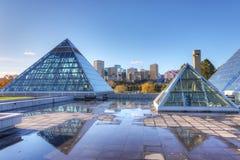 Invernadero de Muttart en Edmonton, Canadá imágenes de archivo libres de regalías