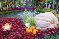 Invernadero del hotel de Bellagio y jardines botánicos Imagenes de archivo