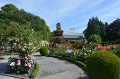 Invernadero del jardín botánico de Christchurch - Nueva Zelanda foto de archivo
