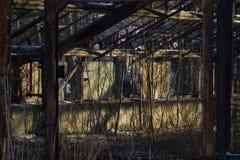 Invernadero demasiado grande para su edad abandonado Fotografía de archivo libre de regalías