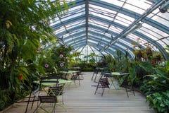 Invernadero en jardín Fotografía de archivo libre de regalías